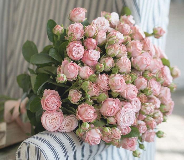 большой букет розовых роз