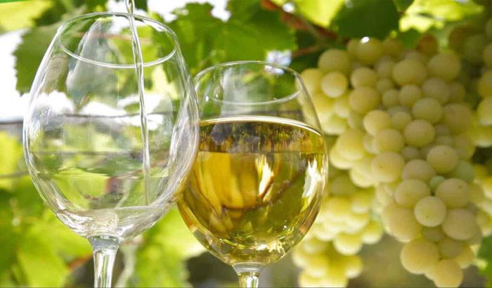 Бокалы белого вина на фоне виноградных гроздей