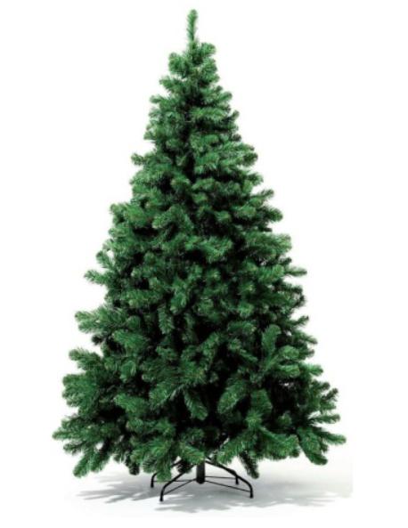 Royal Christmas Dakota