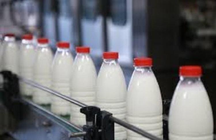Молоко на конвейере