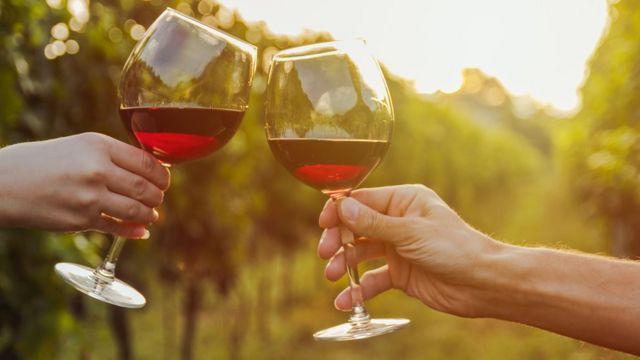 Бокалы с красным вином в руках на фоне виноградников
